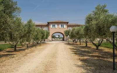 Villa Marina Velca